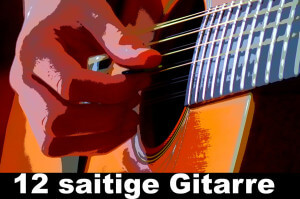 12 saitige Gitarre kaufen