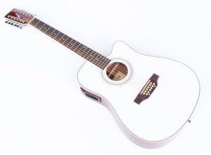 12 saitige Gitarre weiss No Name