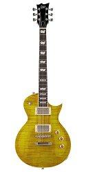 eine besondere Blues Gitarre von LTD