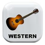 Die beste Westerngitarre kaufen Button